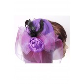 Hair Fascinator Large Net
